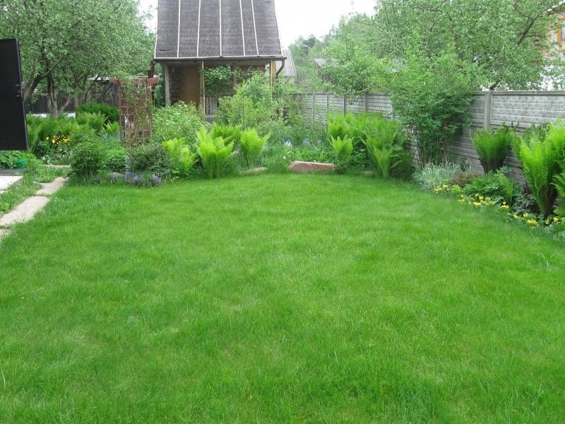 Ландшафтный дизайн, газон с домиком