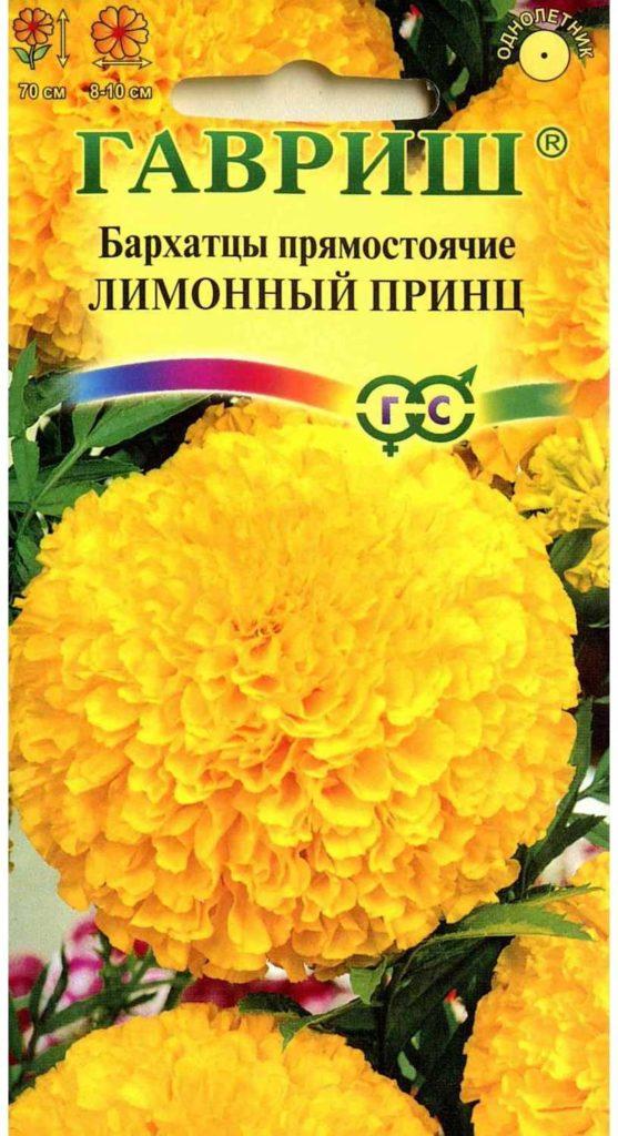 Лимонный принц - сорт прямостоячих бархатцев