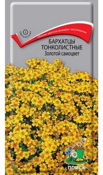 Золотой самоцвет - сорт тонколистных бархатцев