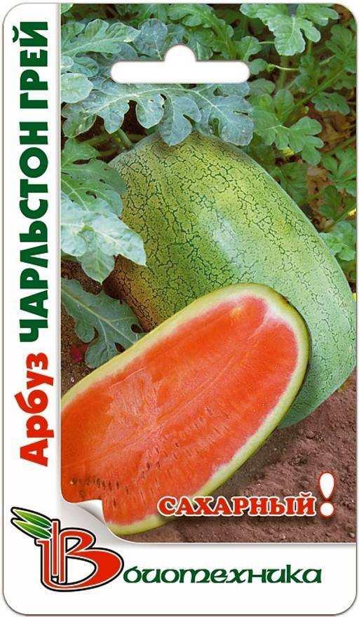 Сорт арбуза - Чарльстон Грей. Один из старейших французских сортов, выращиваемый во многих странах. Хорошо себя чувствует в средней полосе России.