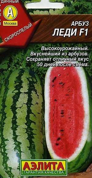 Сорт арбуза - Леди F1. Голландский гибрид, плоды овальной формы 9-12 кг, сильнорослый арбуз, его плети могут достигать длины 5 м. Растение округло-вытянутой формы с темно-зелеными широкими прожилками.