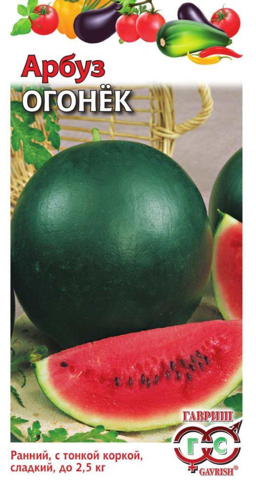 Сорт арбуза ОГОНЁК. Это лучшийсорт для выращивания в средней полосе России. Своим названием обязан сочной мякоти, ярко-красного цвета. Вкусовые качества ягоды удовлетворят наиболее привередливых гурманов.