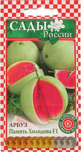 Сорт арбуза - ПАМЯТЬ ХОЛОДОВА F1. Арбуз относится к раннеспелым сортам, но по массе плоды небольшие (2,5-5 кг), тем не менее, урожайный сорт, завязывается много плодов и при должном уходе с одной сотки можно собрать до 120-300 кг урожая. Мякоть сладкая, красная.