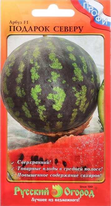 Сорт арбуза - Подарок северу F1. Созревает за 75-85 дней. Плоды массой 10-11 кг. Урожайность средняя, но стабильная. Плод имеет округлую форму, светло-зеленую кожицу с шиповатыми полосками темно-зеленого тона. Мякоть сочная, хрустящая, содержит высокое содержание сахара.