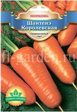 Сорт моркови Шантане (Шантенэ)